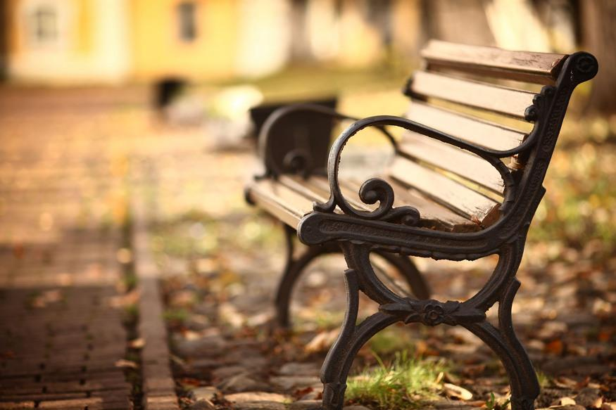 Bench in the park in autumn