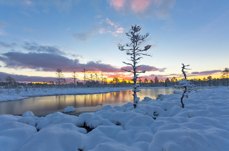 Sunset on a winter landscape