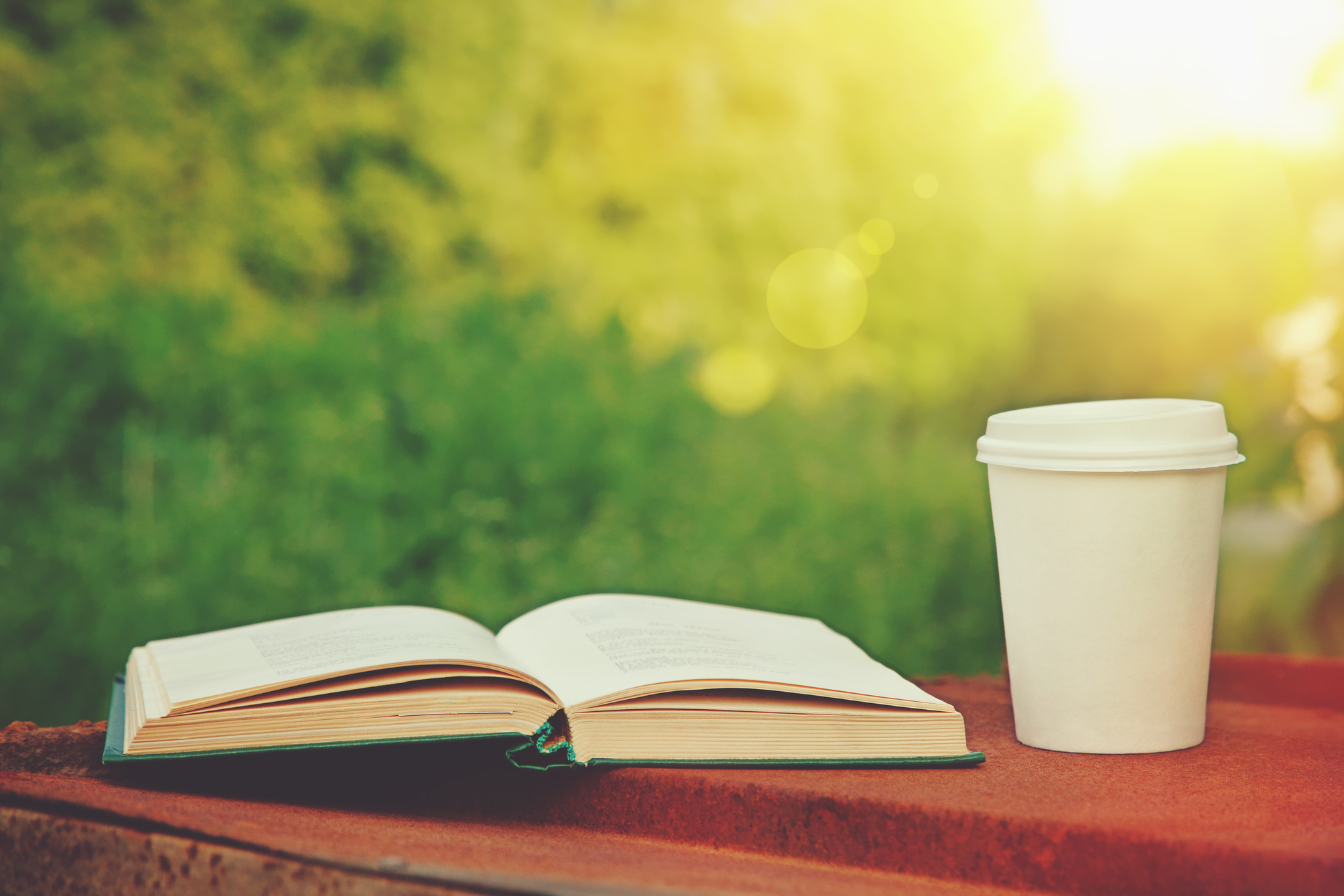 Cup of coffee and book in the summer sunlight