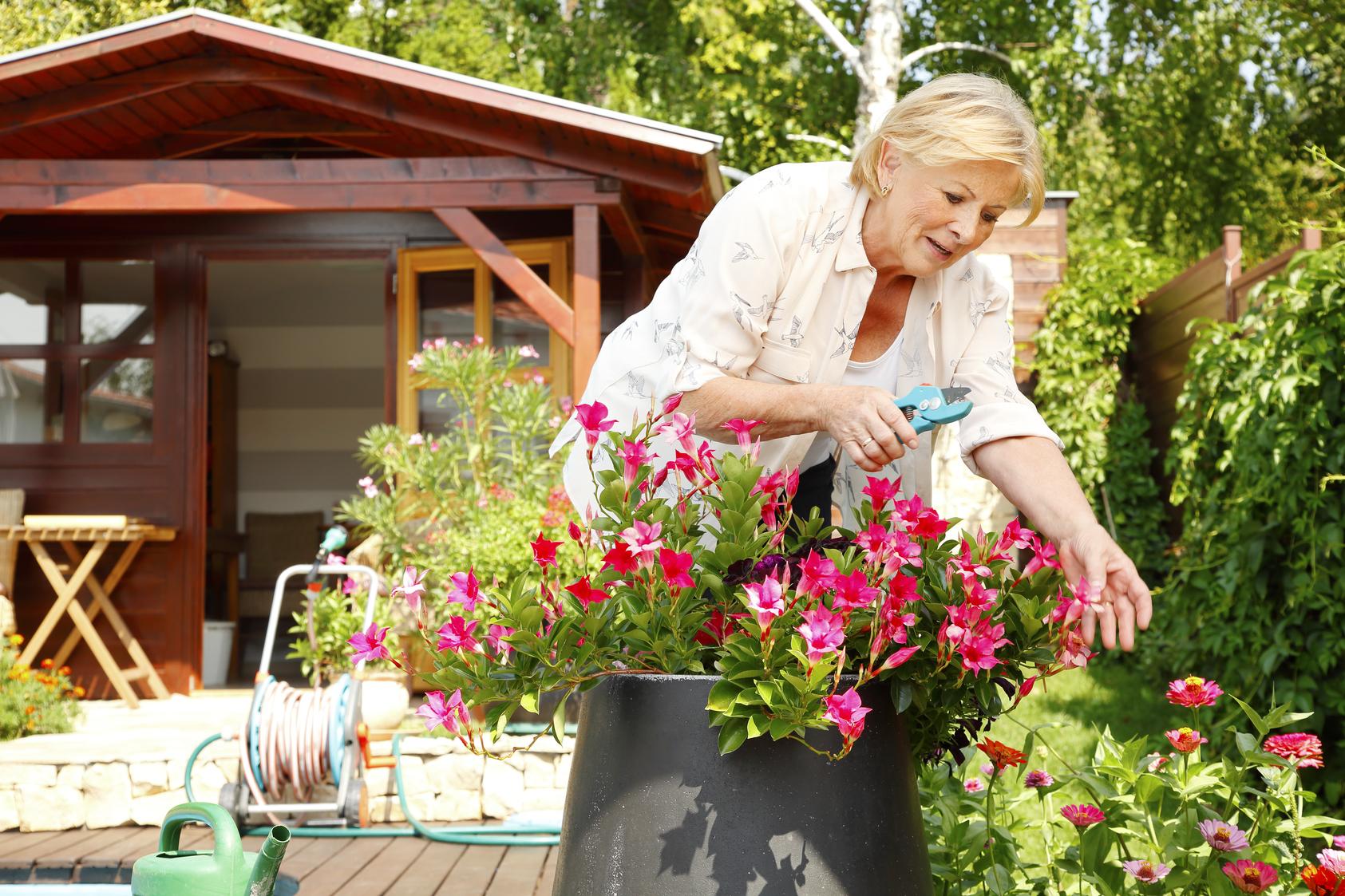 Woman tending to plants in her garden